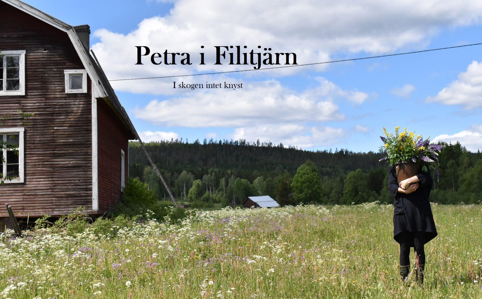 Petra i Filitjärn